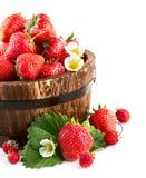 在木桶的新鲜的草莓有绿色叶子和花的 免版税库存图片
