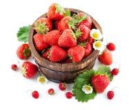 在木桶的新鲜的草莓有绿色叶子和花的 库存图片