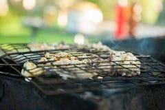 在木炭格栅的烤鸭子 肉切片的准备在调味汁的在火 免版税库存图片
