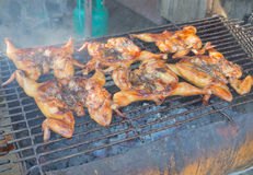 在木炭火炉的泰国样式烤鸡 免版税库存图片