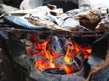 在木炭火炉的烤鱼 免版税库存照片