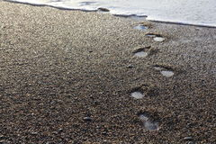 在木瓦海滩的湿脚印 库存照片