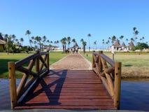 在木的桥梁湖 免版税库存图片