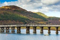 在木的河的桥梁 免版税库存图片