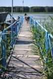 在木的河的桥梁 库存图片