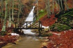 在木的流的桥梁 库存照片