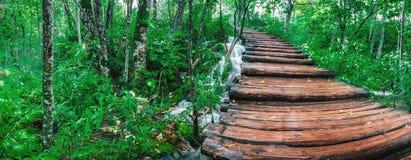 在木的瀑布的桥梁 图库摄影