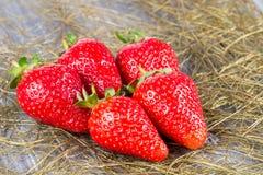 在木的草莓 免版税库存照片