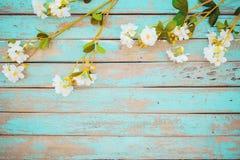 在木的葡萄酒的樱花花 库存照片