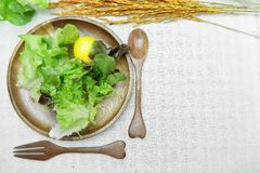 在木盘的沙拉在棉花白色背景 免版税库存图片