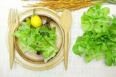 在木盘的沙拉在棉花白色背景 库存照片