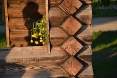 在木眺望台的花 图库摄影