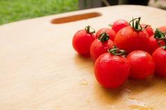 在木砧板的西红柿新小组 库存照片