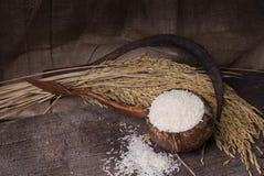 在木碗的白米 库存照片