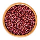 在木碗的红色小豆在白色 库存图片