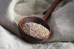 在木碗的Chia种子 免版税库存照片