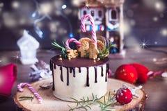 在木立场的圣诞节蛋糕 库存照片