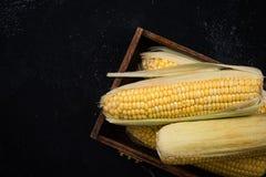 在木箱的新鲜的整个玉米棒子 免版税库存图片