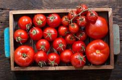 在木箱的新鲜的蕃茄 免版税库存图片
