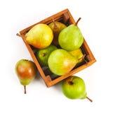 在木箱的梨成熟果子收获 图库摄影