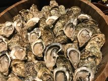 在木箱的牡蛎服务的 免版税图库摄影