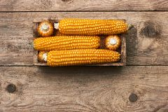 在木箱的玉米在老破旧的脏的土气木背景,平的位置 免版税库存照片