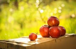 在木箱的苹果 免版税库存图片