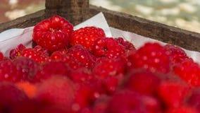 在木箱的莓 免版税图库摄影