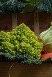 在木箱,收获的绿色和橙色新鲜蔬菜 库存照片