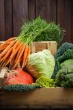 在木箱,收获的绿色和橙色新鲜蔬菜 库存图片