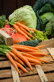 在木箱,收获的绿色和橙色新鲜蔬菜 图库摄影