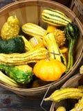 在木篮子的明亮的金瓜 免版税图库摄影