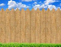 在木篱芭背景和蓝天的新鲜的绿草 库存图片