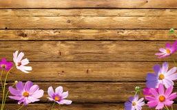 在木头的花 免版税库存图片