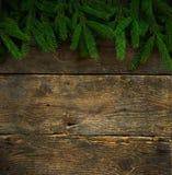 在木纹理的圣诞树分支 免版税库存图片