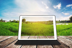 在木纹理的数字式片剂,在日出的农业绿色领域 免版税库存图片