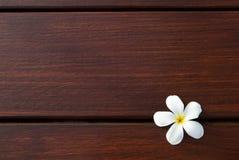在木纹理背景的杏仁奶油饼花 免版税库存图片