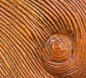 在木纹理背景的被雕刻的旋涡 免版税库存图片