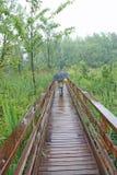 在木结构的走道之下的儿童伞 免版税库存图片