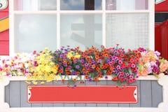 在木罐的五颜六色的花有葡萄酒金属标志的 免版税库存图片