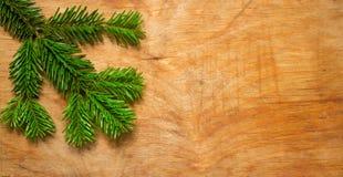 在木老土气背景的圣诞节绿色云杉的枝杈 免版税库存照片