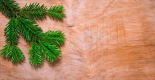 在木老土气背景的圣诞节绿色云杉的枝杈 免版税库存图片