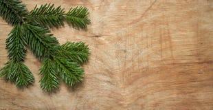 在木老土气背景的圣诞节绿色云杉的枝杈 库存图片