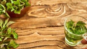 在木背景是一块玻璃用酿造的年轻荨麻 荨麻医药汤  免版税图库摄影