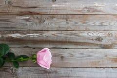 在木背景的一朵柔和的淡色彩玫瑰 库存照片