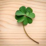 在木背景的三叶草叶子 象征性四片叶子分类 免版税库存照片
