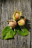 在木背景的三颗榛子 免版税图库摄影