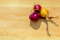 在木背景的两个紫色和一个黄色葱电灯泡在太阳的光芒 库存图片