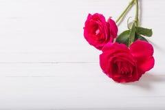 在木背景的两朵玫瑰 库存照片