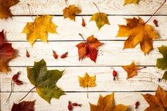 在木背景的五颜六色的秋叶 顶视图 免版税库存图片